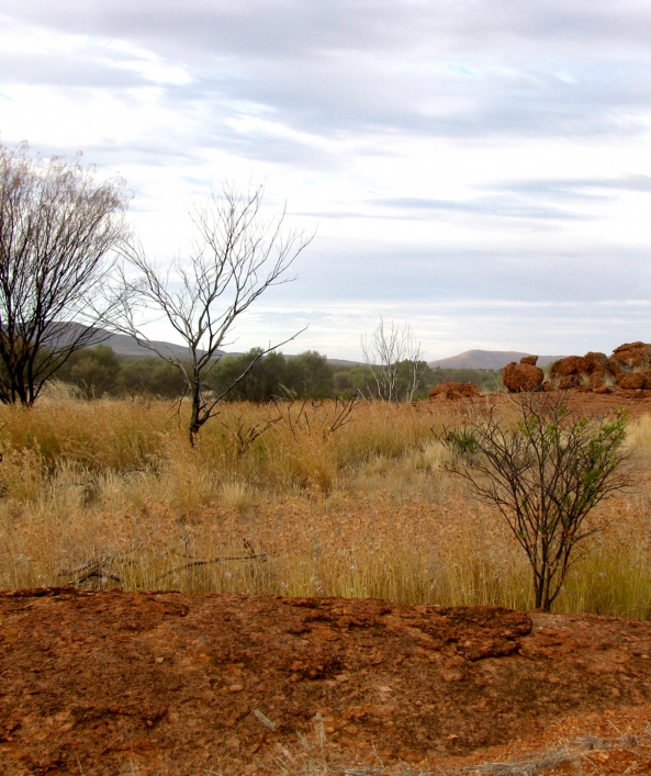 On the road to Yuendumu